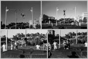 0038-1988-terrasarda-asta-collage.jpg