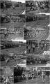 0053-1988-terrasarda-collage.jpg