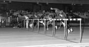 0060-1990-terrasarda-110mhs-pass.jpg