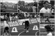 0086-1992-terrasarda-collage-b.jpg