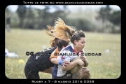 Rugby_a_7_-_8_maggio_2016_0058